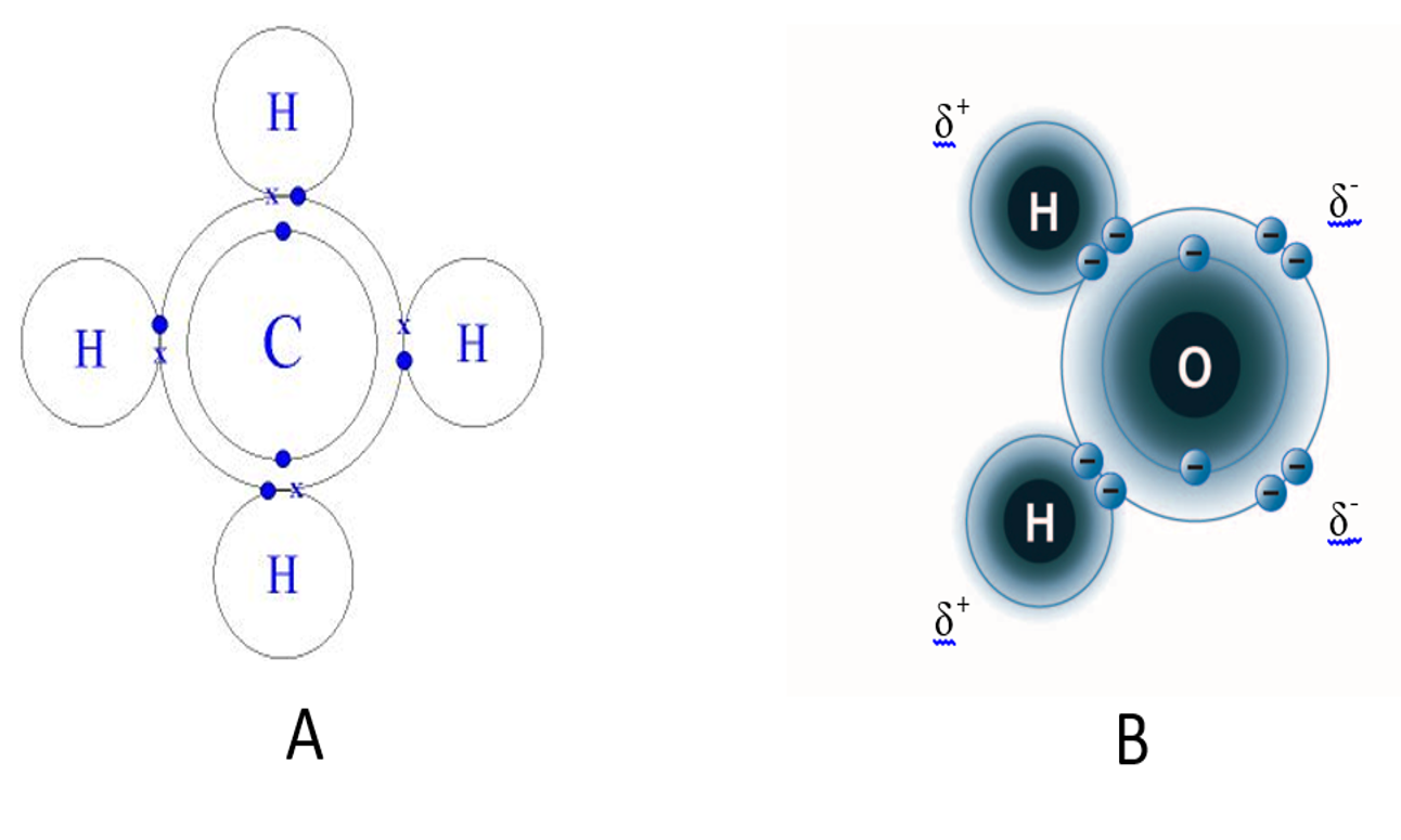 Chemical Bonds Electron Shell Diagram For Oxygen The Next Two Shells Can Hold 8 Difference Is That With Ionic Electrons Are Completely Removed From One Atom Forming Cation And Captured By Other